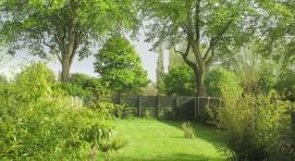 Harris Hedgehog Garden...can you spot me?